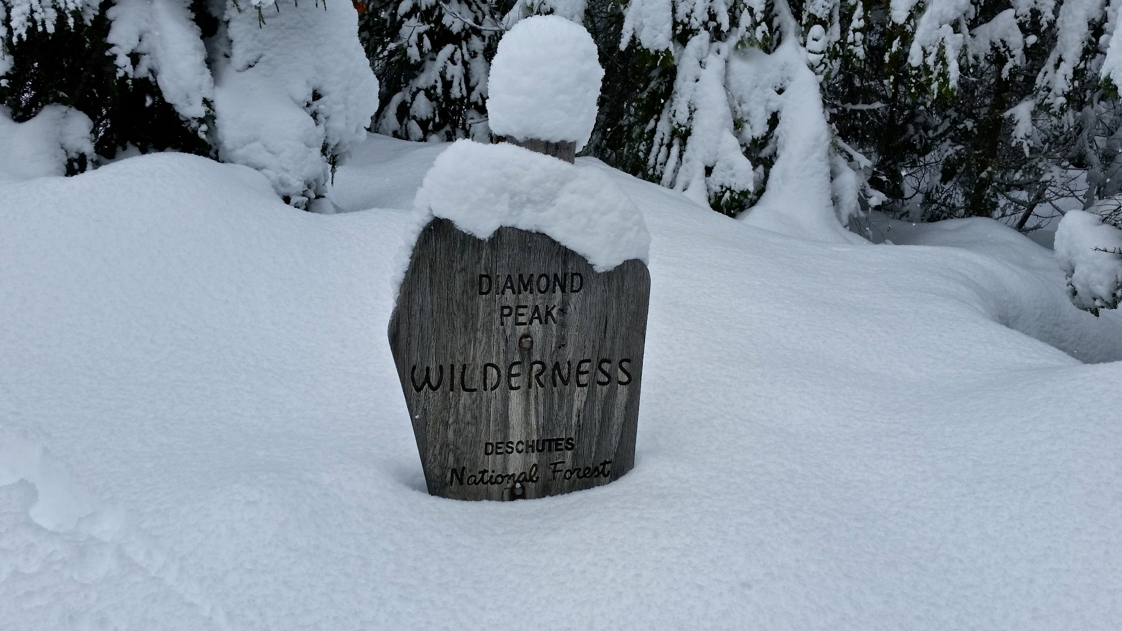 Diamond Peak Wilderness
